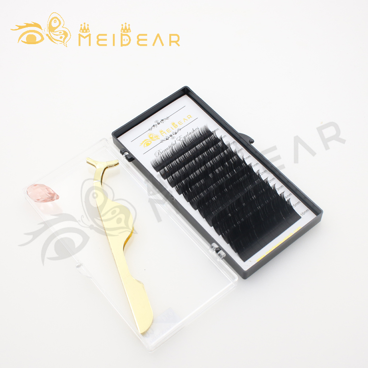 Eyelash vendor wholesale supply DD curl brilliant black color lash extension with private label to US-SX