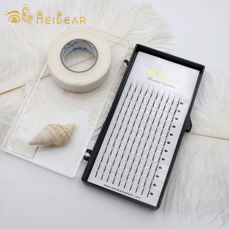 Supplier provide high quality 2D 3D 6D volume lash extension with customized packaging