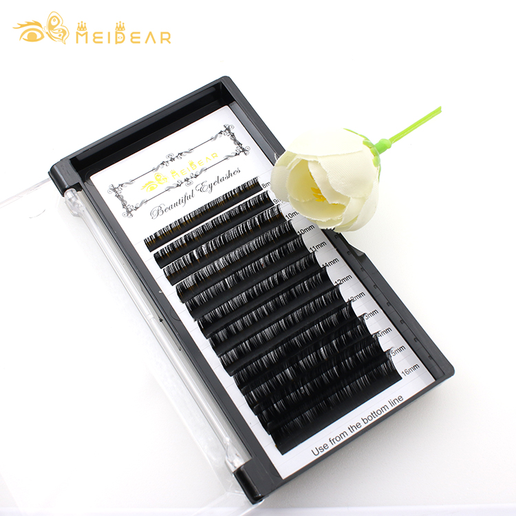Lash vendor supply 16 lines individual eyelash extensions with private label at wholesale price BW